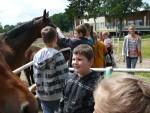 wycieczka do Szymanowa_konie są super!